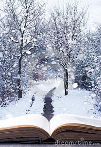 Winter Woodland Book, ID 36123304 © Christopher Elwell, Dreamstime.com